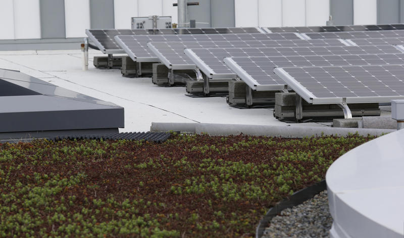 Solar panels and a green roof are among the sustainably-built features of the new Google building on the company's campus in Kirkland, Wash.  In 2015,  the company pledged to nearly double the amount of renewable energy feeding its massive data centers.