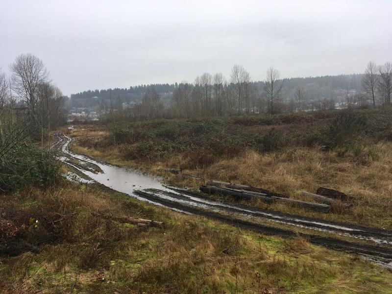 A view of the Quendall Terminals Superfund site in Renton.