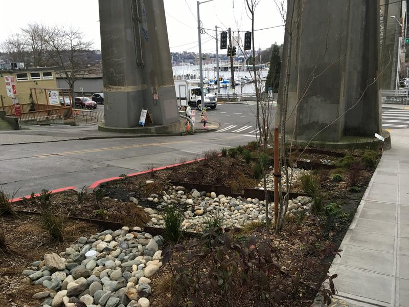 Grey's company installed these bioswales in the city's right of way between their new building and the bridge.