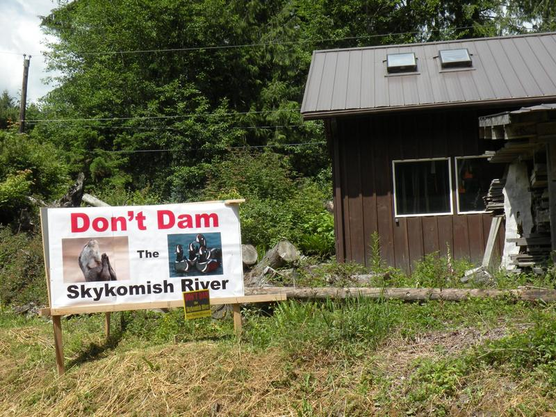 A protest sign in Index, WA shows opposition in 2013 to the proposed Sunset Falls hydro project on the South Fork of the Skykomish River.