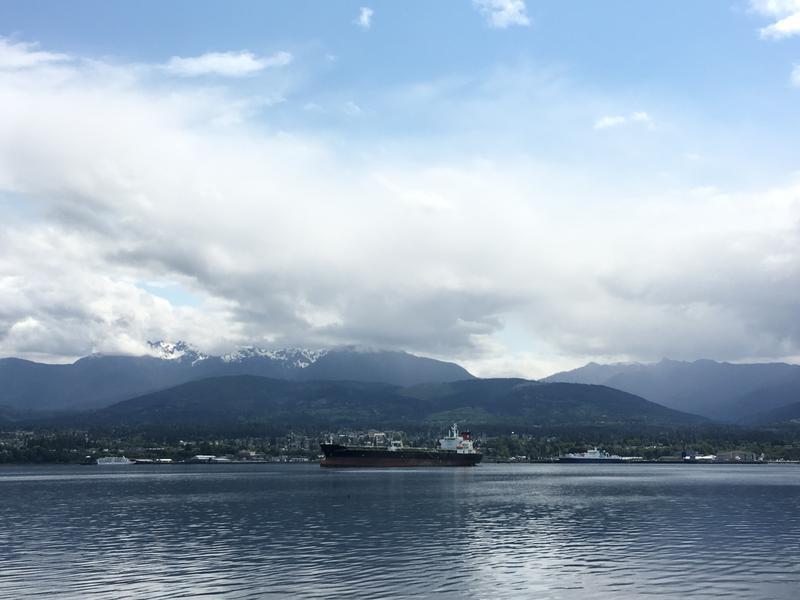 Port Angeles, as seen from Ediz Hook, on June 5, 2018.