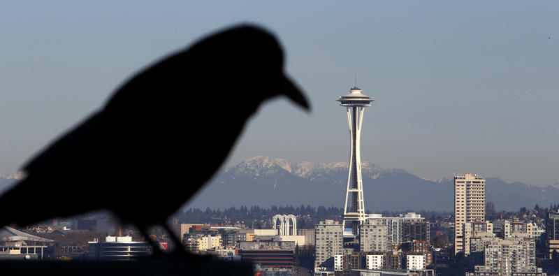 A crow sits in view of the Space Needle and Cascade Mountains behind Monday, Jan. 3, 2011, in Seattle.
