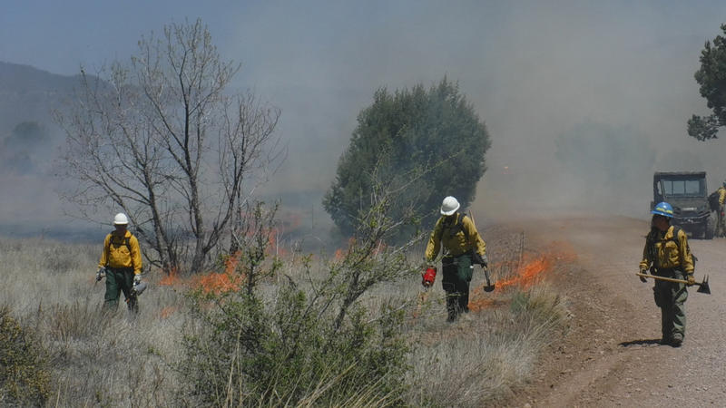 This Wednesday, April 20, 2016 photo provided by the National Forest shows crews managing a prescribed fire northeast of Silver City, N.M.
