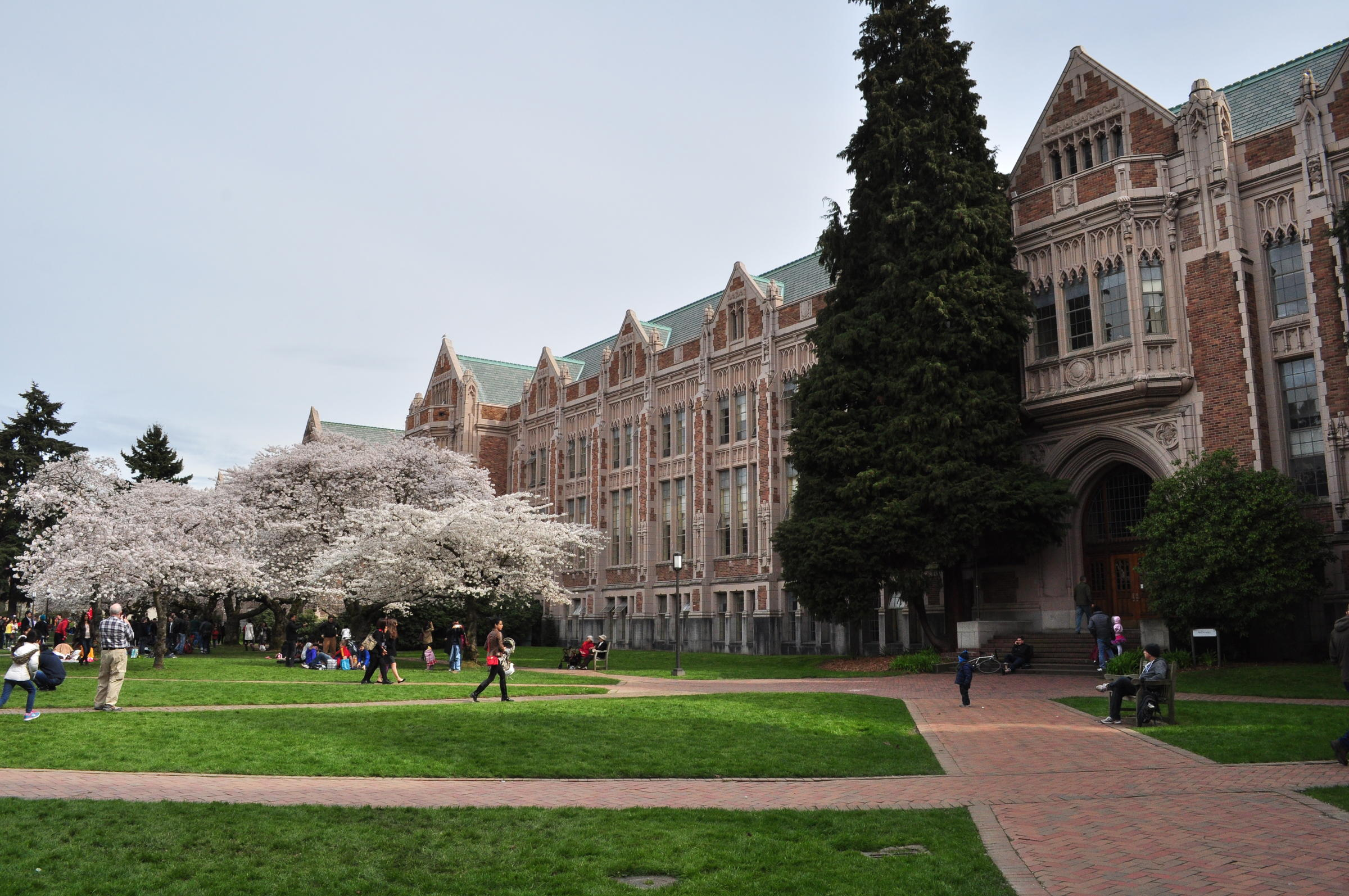 diversity on uw campus proves lacking for one student knkx
