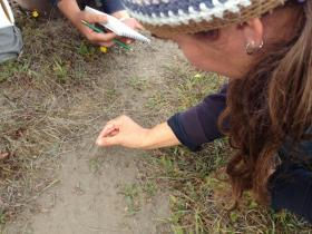 Co-instructor Meghan Walla-Murphy shares tips to identify wildlife tracks.