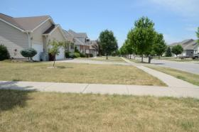 One signed measure bans homeowners associations from fining members who don't water their lawns during a drought.