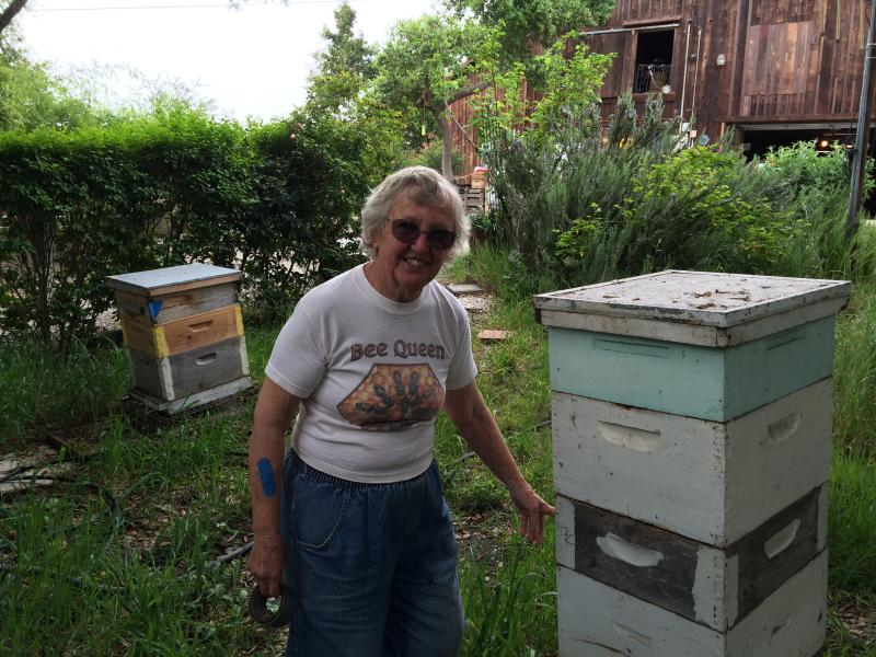 Peterson and one of her hives