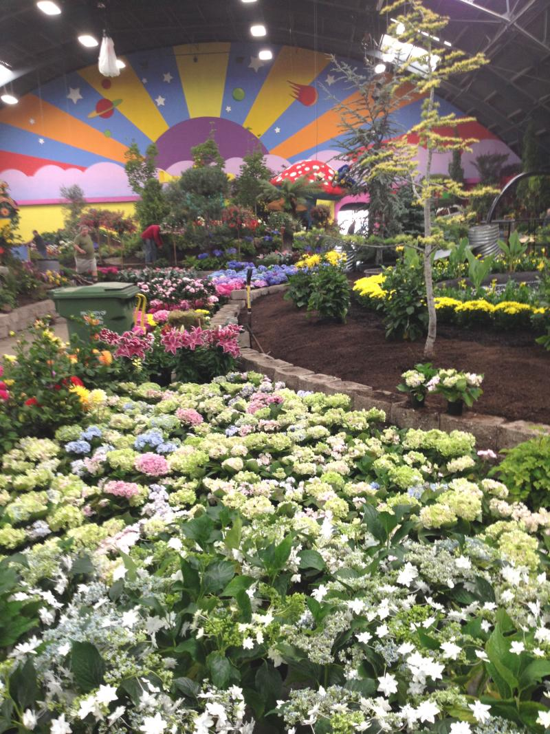 Many desingers wait as long as they can to actually plant their flowers, so that the displays will remain fresh and bright throughout the fair's run.