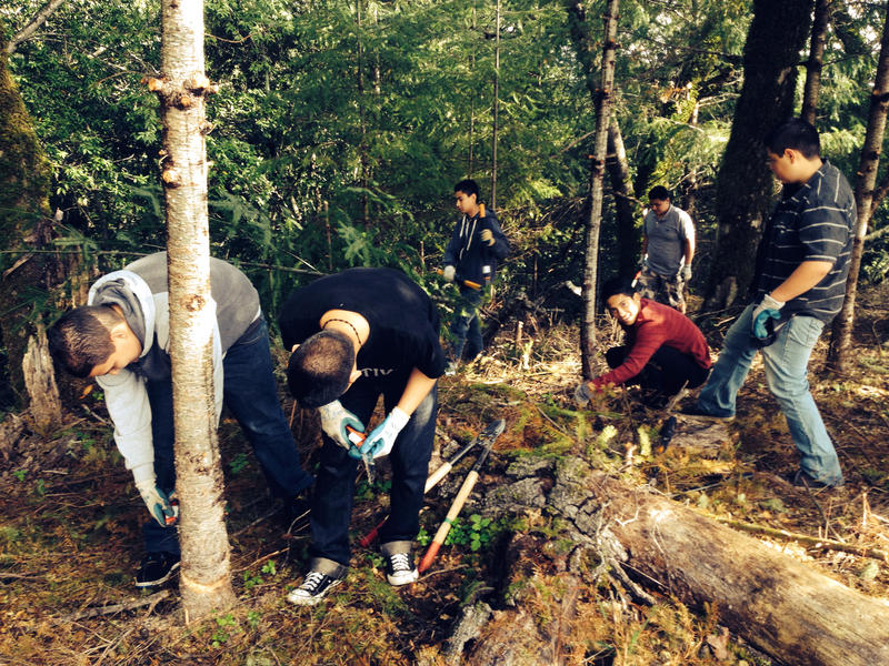 Students from Roseland Acceleerated Middle School work in pairs, doing habitat improvements in the oak woodland