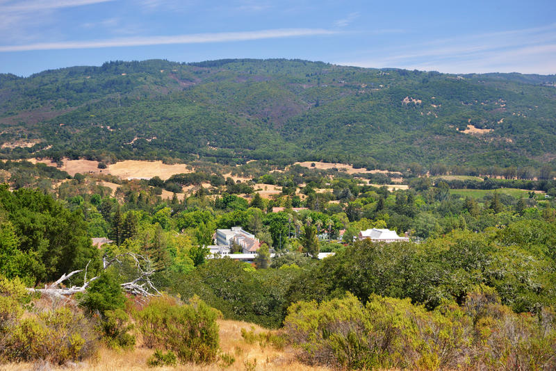 Seen from the hillside above, the Sonoma Developmental Center's 200 acre cluster of buildings is overshadowed by the surrounding greenery.