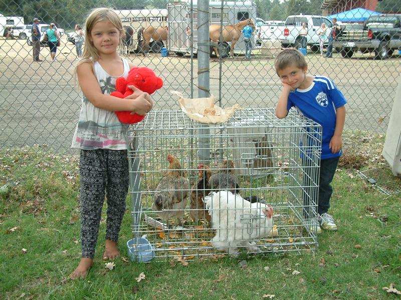"When she had to leave Middletown 8-year-old Sydney (left) brought her favorite stuffed animal --- a red Teddy bear named ""Fireheart"" --- some clothes and her bow and arrow. She poses here with a neighbor's chickens and her friend Zack."