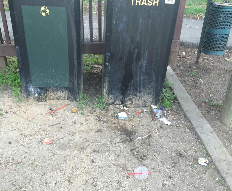 The scattered debris was modest around this trash receptacle in San Anselmo's Millenium Park before Heather Itzal collected it on September 5th.