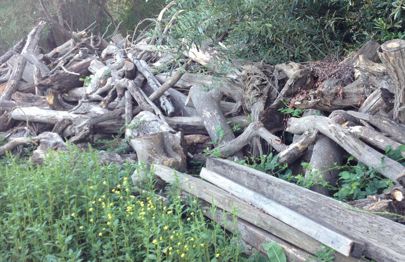Numerous large piles of logs and lumber augmented the manufactured items pulled from the waterway.