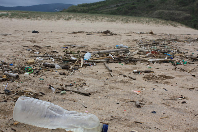 A new policy from the State Water Board is looking to reduce trash in all of California's waterways, including beaches.