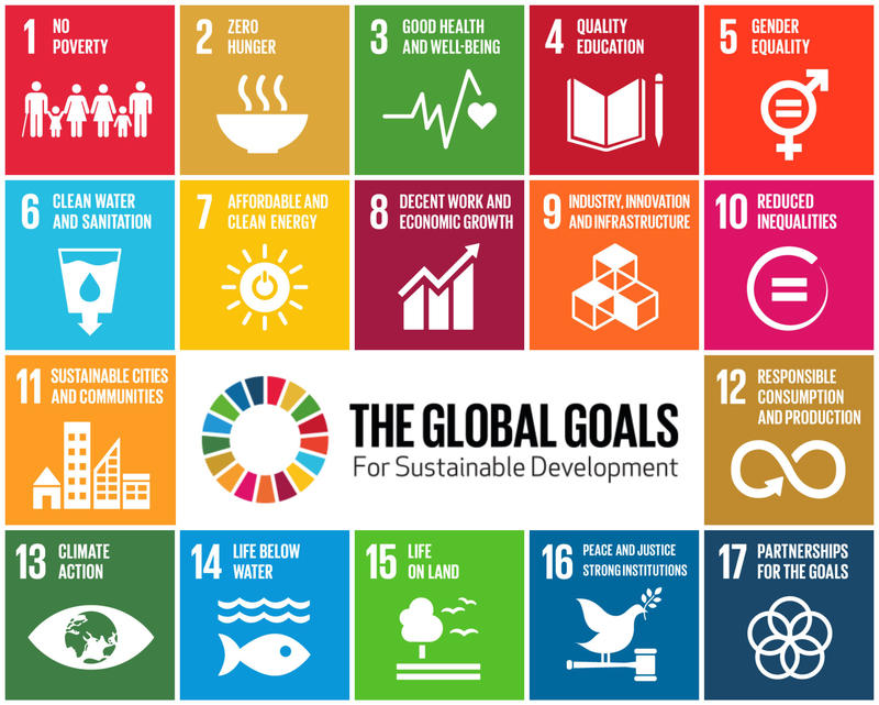 At the United Nations Sustainable Development Summit last September, world leaders adopted the 2030 Agenda for Sustainable Development, which includes this set of 17 goals to end poverty, fight inequality and injustice, and tackle climate change.