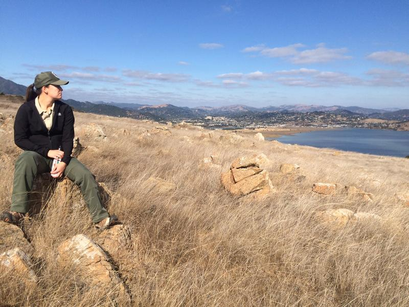 Marin County Parks Ring Mountain Stewardship Coordinator Sarah Minnick looks out across the bay from a rock on the preserve.