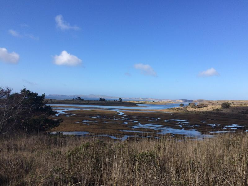 A view of a portion of Drakes Bay and the Sir Francis Drake ship landing site from Limantour Beach.