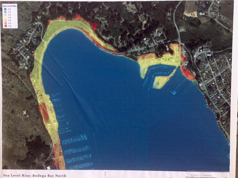 Areas highlighted in yellow and red show potential zones sea level rise could inundate in Bodega Bay by the year 2050.