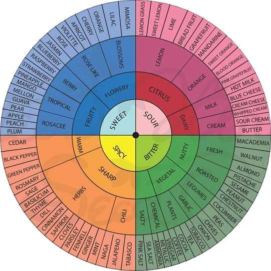 Much like the wheel of flavor notes to be found in wines, this coloful illustration identifies the various terpenes in the broader plant world.
