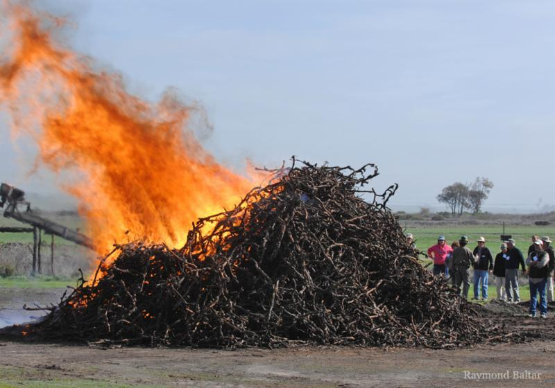 Burning is the first step in creating biochar.