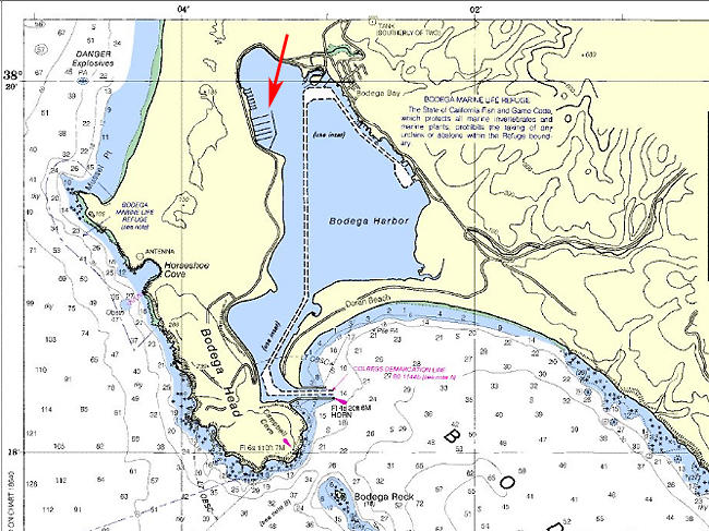 This chart shows the location of the channel through Bodega Bay that is due to be dredged again later this year. The red arrow indicates Spud Point Marina, where sediment levels are also building up.
