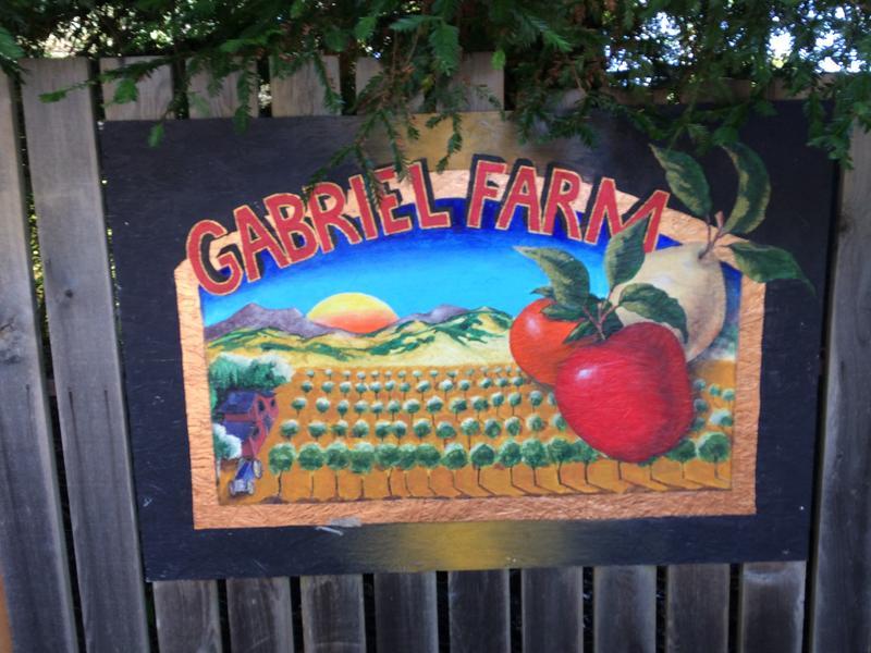 Gabriel Farm, Sebastopol