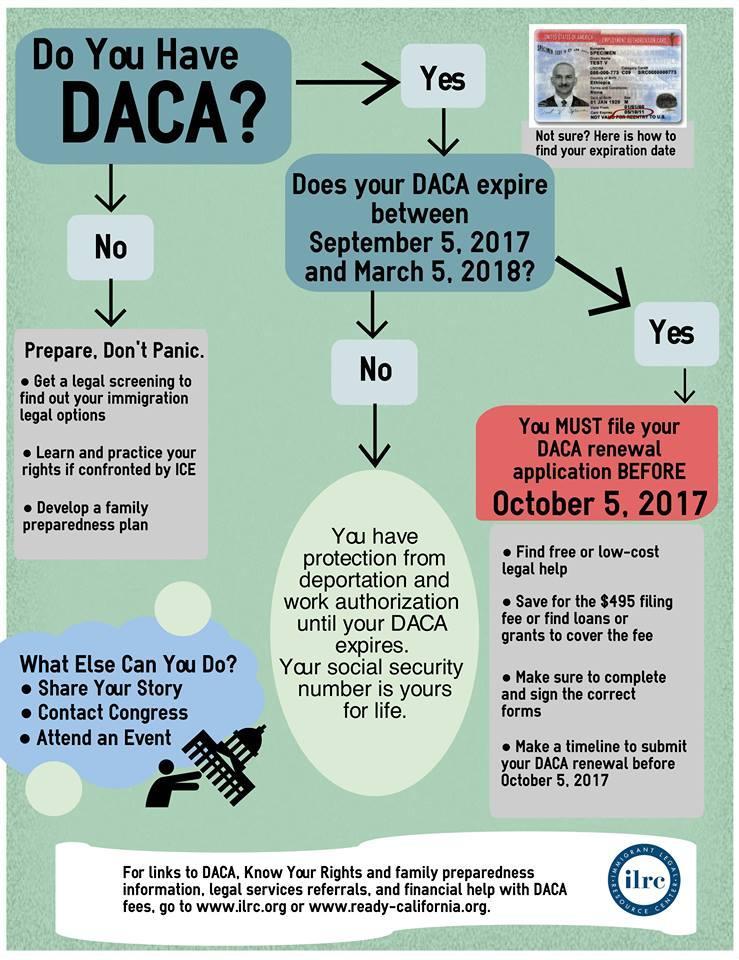 DACA graphic