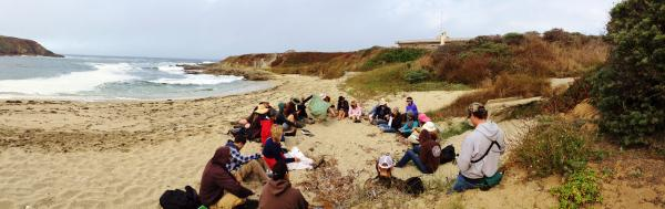 California Naturalist students take a field trip to Bodega Bay to learn about wildlife.