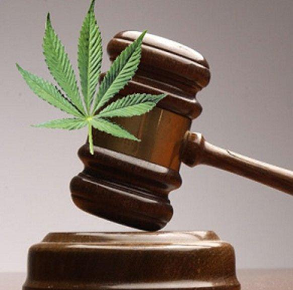 the controversial issue involving the legalization of marijuana Legalizing marijuana support the legalization of marijuana and controversial issue in our country and remains an extremely touchy subject.