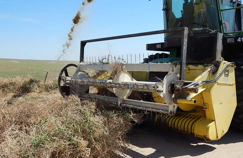The Tumbleweed Eater, a modified John Deer Harvester, pulls the tumbleweed in the front, grinds it up and spits it out.