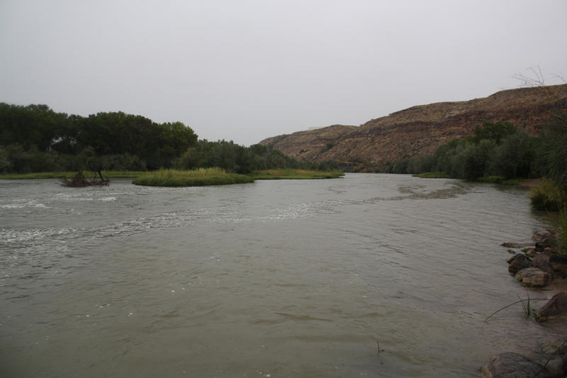 The Gunnison River, a tributary of the Colorado River, runs through Grand Junction, Colo.
