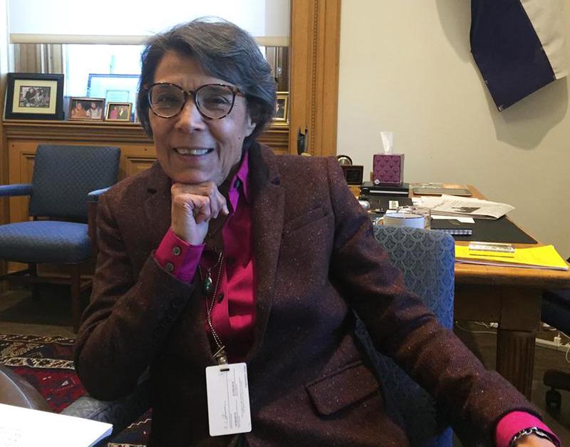 Lucia Guzman, Senate minority leader