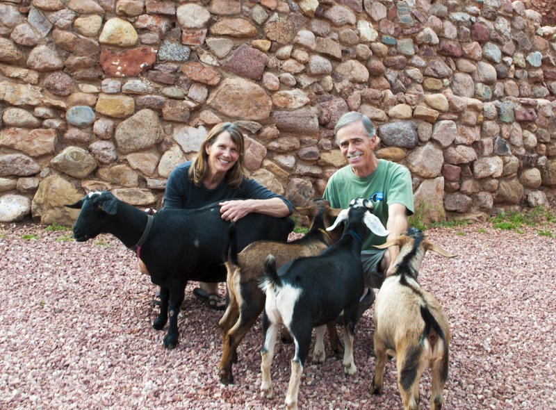 Gail and Dan Stuart with their goats. From left: mother goat, Giles Snyder, Shankar Vedantam, and Steve Inskeep