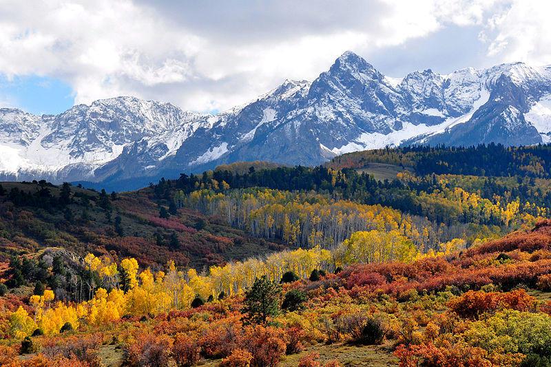 Fall Colors near Ridgeway, Colorado