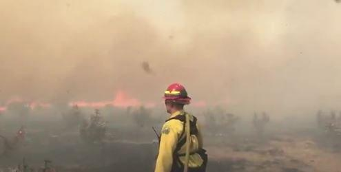 Photo from the 117 Fire, which damged or destroyed 36 structures and more than 43,000 acres in El Paso County in April.