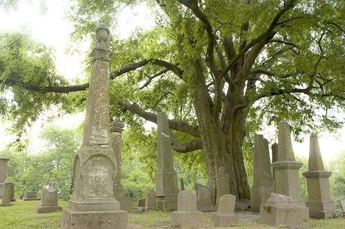 Old Lorimier Cemetery is rumored to be one of Cape's most  haunted areas.