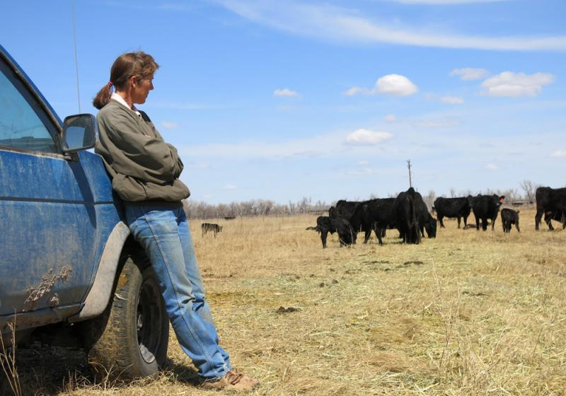 Rancher Sharon Harvat worries that importing fresh beef from Brazil could bring foot-and-mouth disease, which could wreak havoc on the U.S. beef trade.