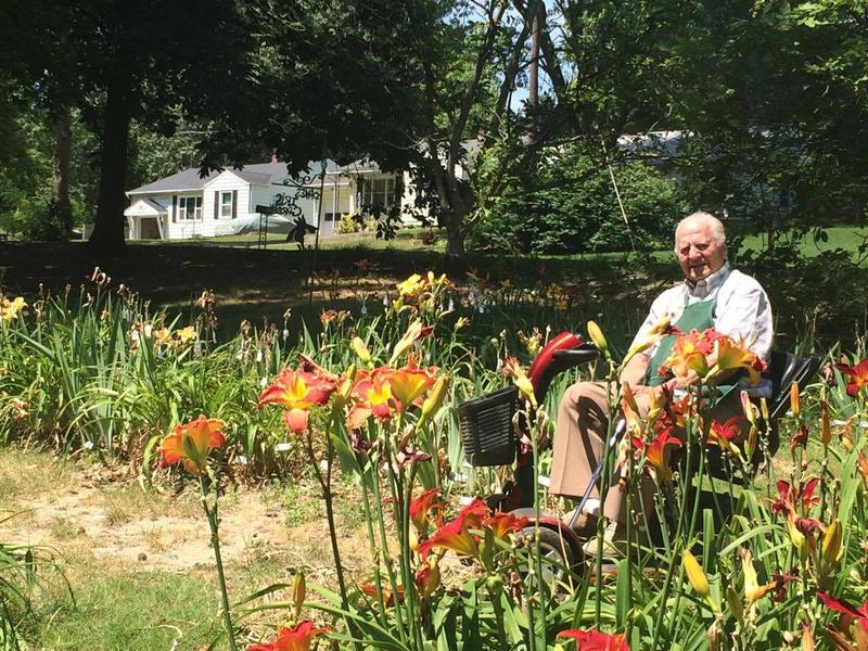 Hybridizer Dave Niswonger has been enhancing the appearance of plants for nearly six decades.