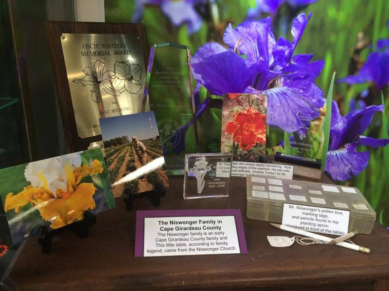 One of the many awards Niswonger has earned for his irises and daylilies.