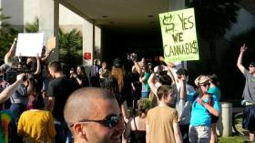 Legalize Louisiana held a protest in Houma, hoping to bring attention to the role marijuana can play in today's society.