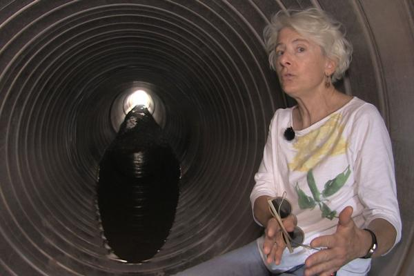 Las Cruces city planner Carol McCall in the tunnels of a city managed arroyo underneath Sonama ranch blvd