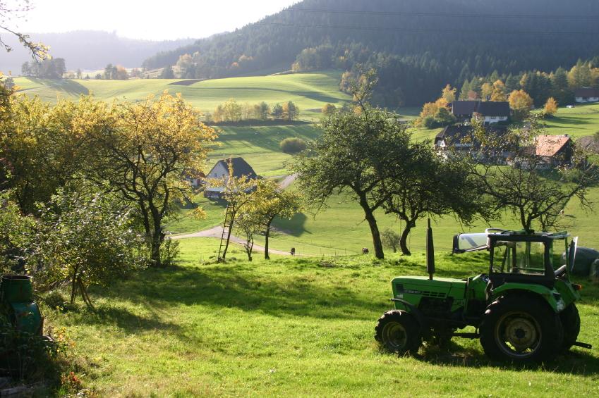 big fat farm show ksjd