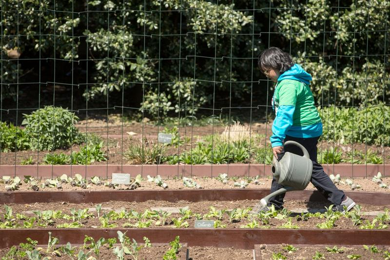 Kemper Elementary student waters the White House garden