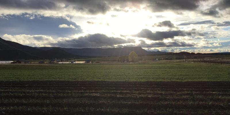 A view of Mountain Roots farm in Mancos.
