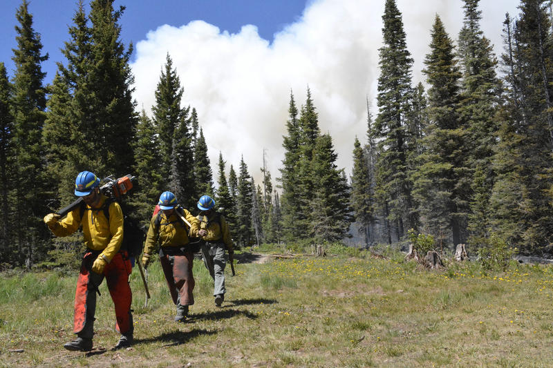 File photo of the Burro Fire in June.