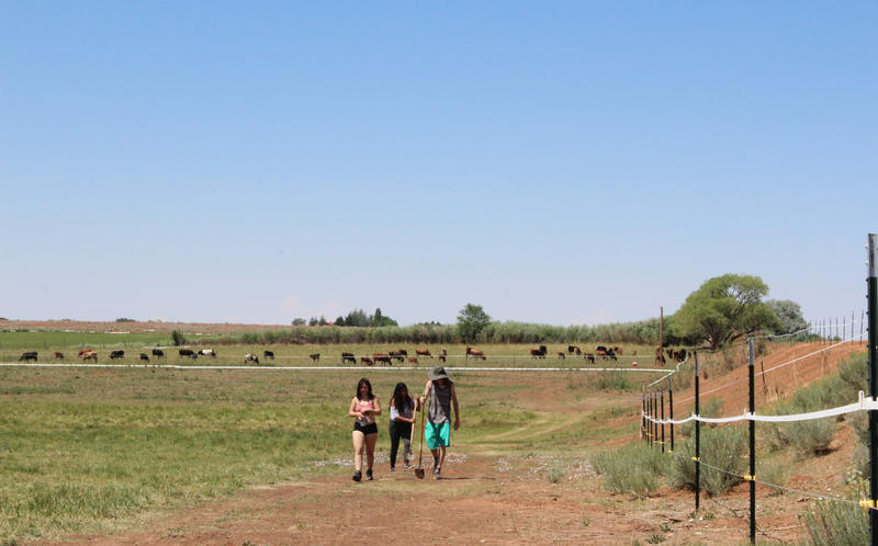 A group of students return after completing their first assignment at Fozzie's Farm.