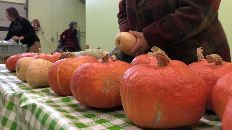 Squash is counted as the co-op prepares for the final week of its fall harvest share program.