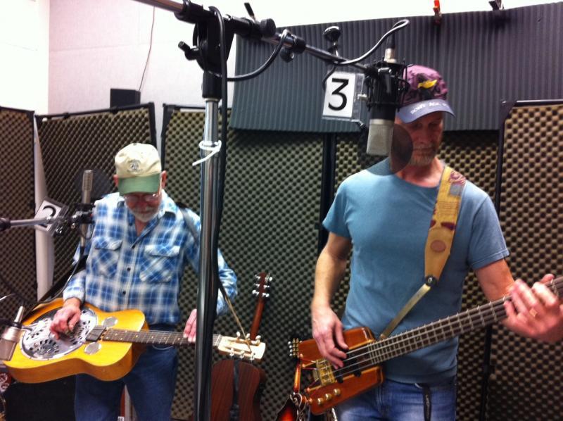 Hamburger Cows on Studio Live