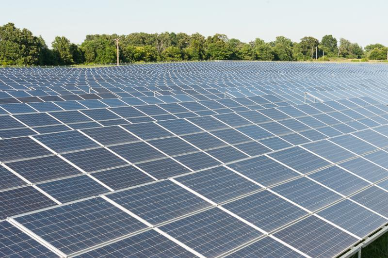 The solar farm is off of Farm Road 112 in northeast Springfield