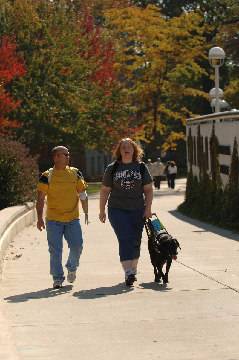 Students walk through campus with guide dog